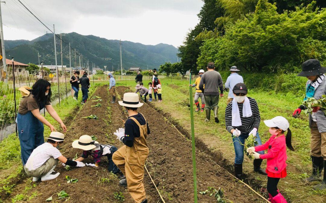 nino farm event(ニノファームイベント)